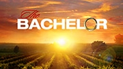 ABC The Bachelor auditions